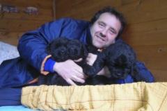 cucciolate-cani-terranova-vecchie-33